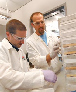 Researchers with trays
